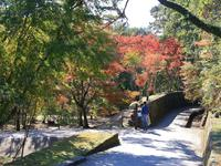【終了しました】曽木の滝公園 紅葉状況・第57回曽木の滝公園 もみじ祭り
