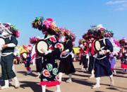 田中種子島踊り