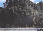 太良城の跡