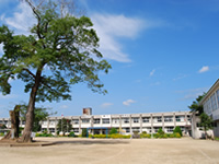 羽月小学校