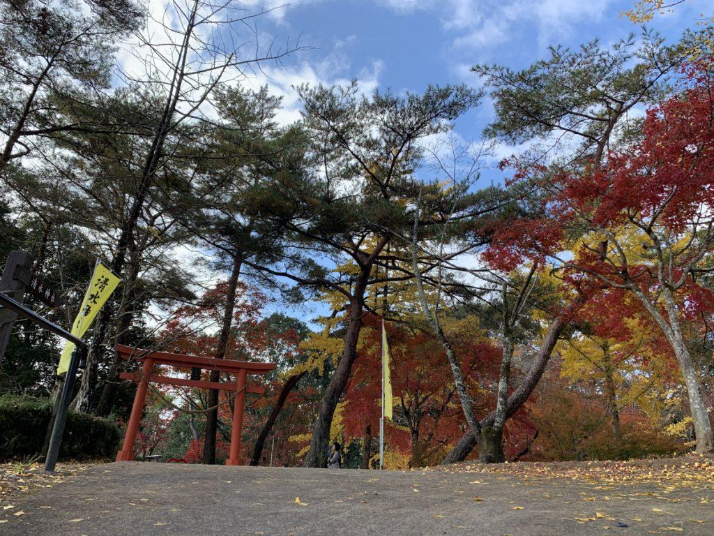 曽木の滝は紅葉が見頃です!